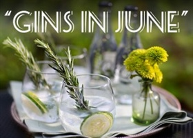 Tasting Notes - Gins in June